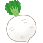 vegetable_kyouyasai_syougoin_daikon