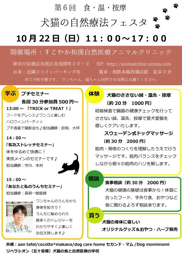 第6回横浜フェスタ